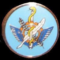 סמל טייסת מנהלה כנף X גרסה 1