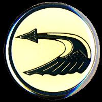 סמל טייסת תעופה כנף 1 רמת דוד גרסה 1