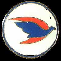 סמל טייסת תעופה כנף X גרסה 1
