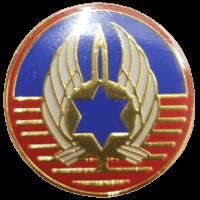 סמל כנף 1 רמת דוד גרסה 1