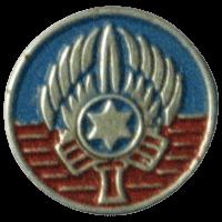 סמל כנף 1 רמת דוד גרסה 3