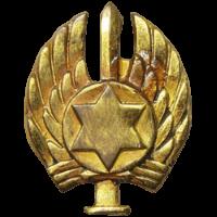 סמל כנף 1 רמת דוד גרסה 4