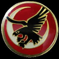 סמל טייסת העמק 109 גרסה 1