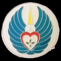 סמל טייסת מנהלה בח''א 30 פלמחים גרסה 1