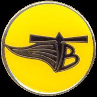 סמל טייסת 123 ציפורי המדבר גרסה 1