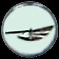 סמל טייסת 125 המסוקים הקלים גרסה 1