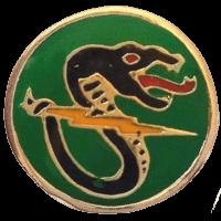 סמל טייסת 161 הנחש השחור גרסה 1