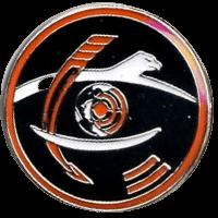 סמל טייסת 210 הנשר הלבן גרסה 1