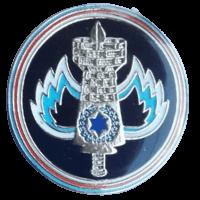 סמל יחידת בינוי בח''א 30 פלמחים גרסה 1