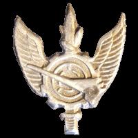 סמל יחידת מלפ''ט גרסה 1