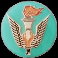 סמל יחידת שה''ד 339 גרסה 1