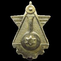 סמל יצמ''ח 230 גרסה 1