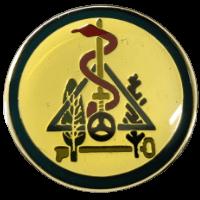 סמל טייסת מנהלה בח''א 6 חצרים גרסה 1