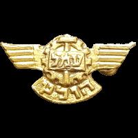 סמל בית הספר עמל 'הולץ' חיל האוויר גרסה 1