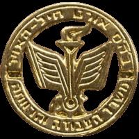 סמל בית ספר אורט חיל האוויר גרסה 1