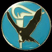 סמל טייסת השכלה בקורס טיס גרסה 1