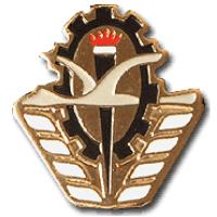 סמל טייסת מיון בקורס טיס גרסה 1