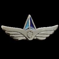 סמל מחלקת הגנה אווירית ואיסוף גרסה 1