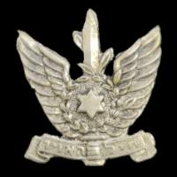 סמל חיל האוויר מוקטן גרסה 6