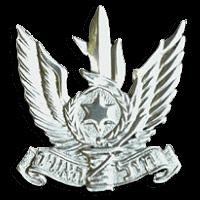 סמל כובע חיל האוויר גרסה 1
