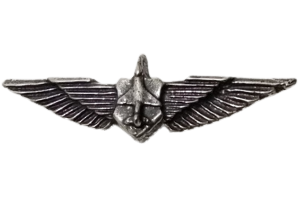 סמל לא מזוהה 28