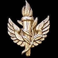 סמל לא מזוהה 18