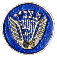סמל מחלקת צב״ד סטנדרטי גרסה 1