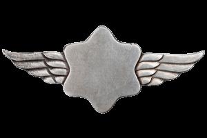 הצעה לסמל חיל האוויר הראשון גרסה 1