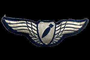 כנפי מטילן גרסה 1