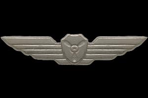 כנפי מכונאי מוטס גרסה 4