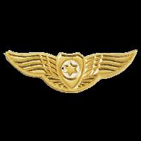 סמל כנפי הזהב גרסה 3