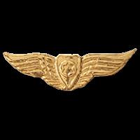 סמל כנפי הזהב גרסה 4