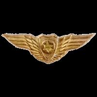 סמל כנפי הזהב גרסה 5