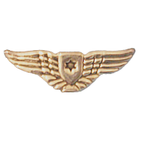 סמל כנפי הכסף גרסה 1