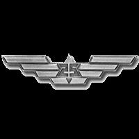 סמל כנפי הכסף גרסה 2