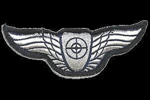 סמל כנפי מקלען אווירי גרסה 1