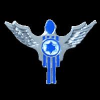 סמל טייסת מנהלה בכנף 167 גרסה 1