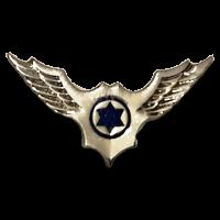 סמל טייסת תעופה כנף 168 גרסה 1