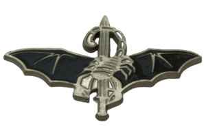 סמל לוחם 'סטינגר' גרסה 5