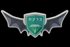 סמל סוללת 'ברקת' גרסה 1