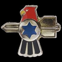 סמל גדוד 138 גרסה 1