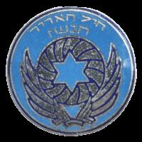 סמל ענף הנעה גרסה 1